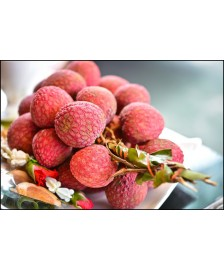 Litchi  Fresh  From Malda  2.6  KG - Cooming Soon Next day Delivery for Major Cities