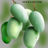 Kacha Aam Or Raw Mango-4 Kg